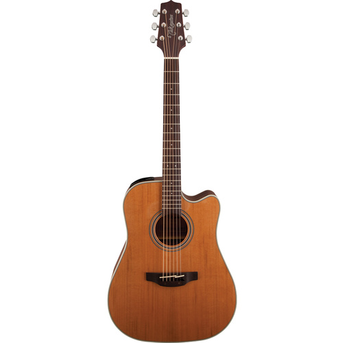 Takamine GD20CENS Solid Cedar Top Dreadnought Acoustic/Electric image